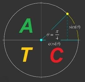Advanced Trigonometry Calculator